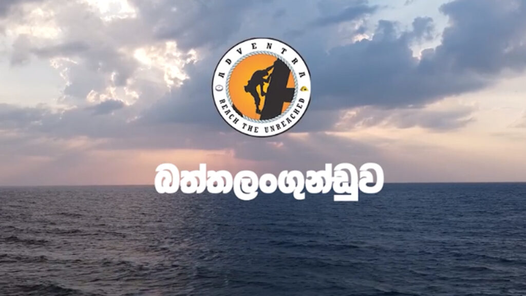 Social Media Marketing Specialists in Sri Lanka that build with some Innovative Minds around the World. | Zavoha